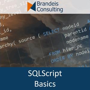 Videokurs<br>SQLScript Grundlagen