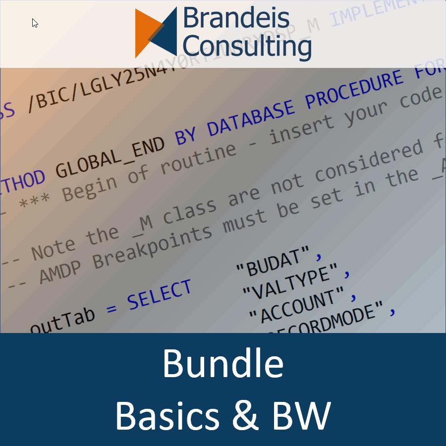 Paket<br>SQLScript für BW-Berater